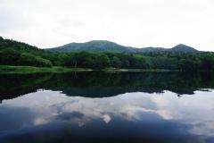 朝の湖は風もなく水面が静かです